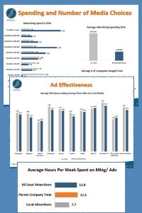 Download a Sample Advertiser Survey Report